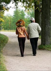 О неоценимой пользе пеших прогулок