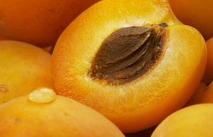 Лечим печень в домашних условиях от жирового гепатоза