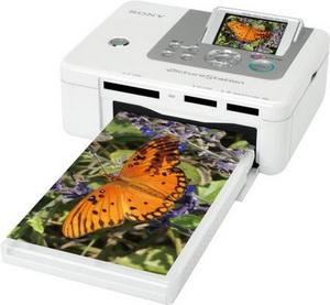 Какой принтер выбрать? Струйный или лазерный?